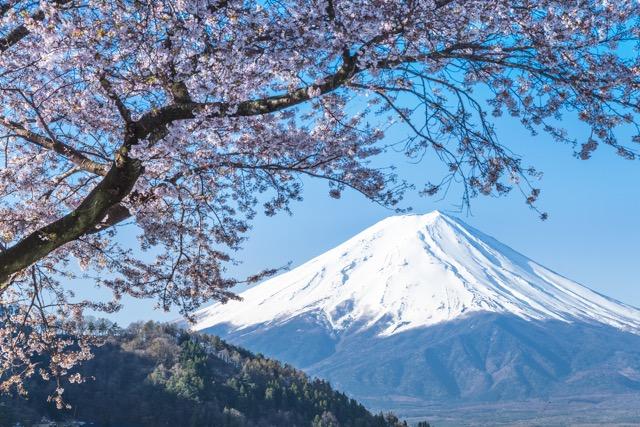 世界の食通が選ぶ!日本の素晴らしいレストランTOP30 画像1