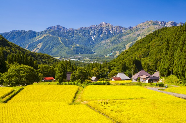外国人旅行者が日本で体験してみたい19のこと 画像9