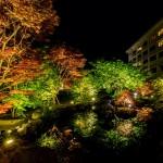 ガーデンライトアップ