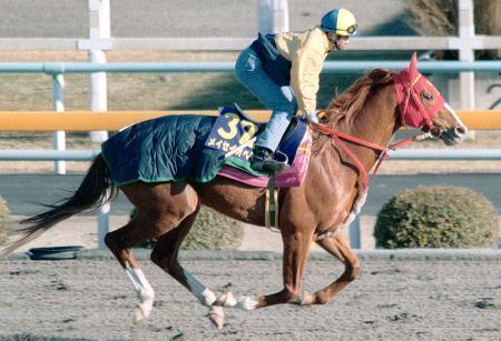 メイセイオペラ死ぬ 地方馬で唯一G1制覇 画像1