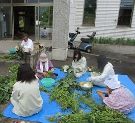 ph6 下高井農林 活動