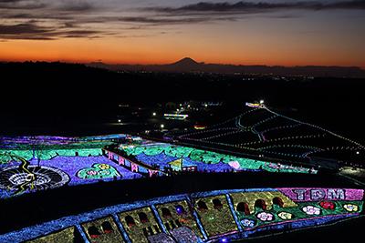 4位:東京ドイツ村ウインターイルミネーション【東京ドイツ村】