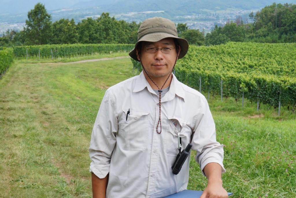 椀子ヴィンヤードを調査する農研機構の楠本良延先生。