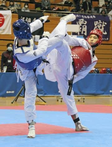 テコンドー、鈴木リカルド初優勝 全日本選手権 画像1