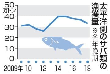 太平洋のサバ漁獲枠を31%減に 20年、資源安定へ管理強化 画像1