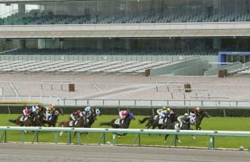 JRAは7、8日も無観客レース 中山、阪神、中京の各競馬場 画像1