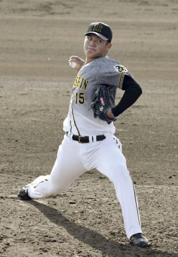 阪神の西純矢投手、2軍戦で好投 ドラフト1位、1回三者凡退 画像1