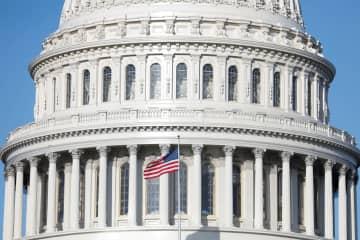 米与野党、コロナ経済対策で対立 民主党は雇用維持重視 画像1