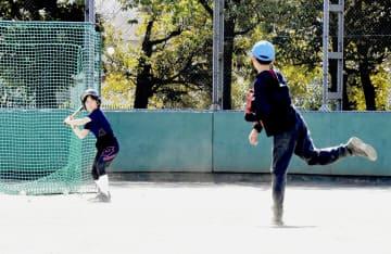 少年野球連盟がグラウンド開放 運動不足を屋外で発散、川崎 画像1