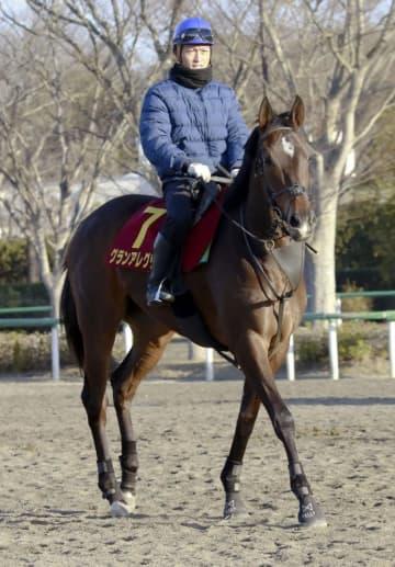 競馬、グランアレグリア1番人気 高松宮杯の前日オッズ 画像1