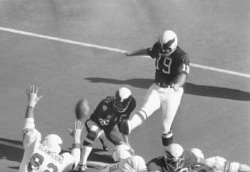 米NFLの名選手、コロナで死去 元セインツのデンプシー氏 画像1