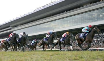 JRA京都競馬場の職員2人感染 陽性者と車で移動、食事も共に 画像1