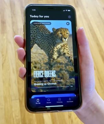 米でスマホ向け動画配信を開始 新興企業クイビー、大手に挑む 画像1