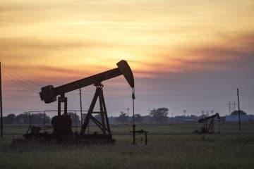 NY原油、6月も急落 11ドル台、供給過剰懸念強く 画像1