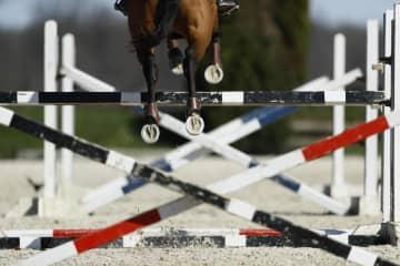 五輪の馬術、人馬の年齢規定変更 東京大会1年延期で 画像1