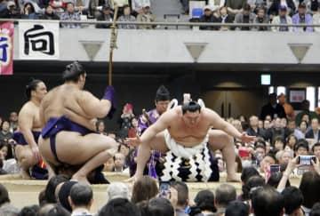 不実施の大相撲春巡業、動き新た 開催延期、冬巡業に組み込みも 画像1