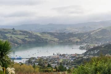 ニュージーランド、非常事態解除 新型コロナの感染抑制進む 画像1