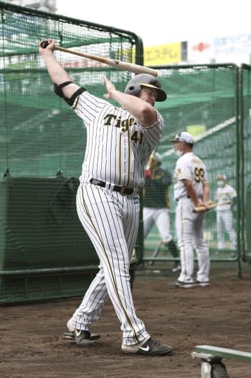 阪神のボーア「試合出られる」 開幕見据え、調子上向き 画像1