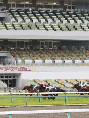中央競馬、6月も無観客で開催 騎手、競走馬の移動制限など解除 画像1