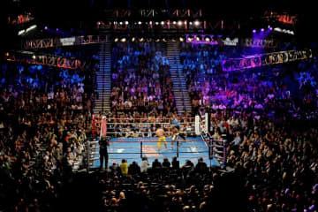 米ラスベガスでボクシング再開へ 興行大手が6月9日から 画像1
