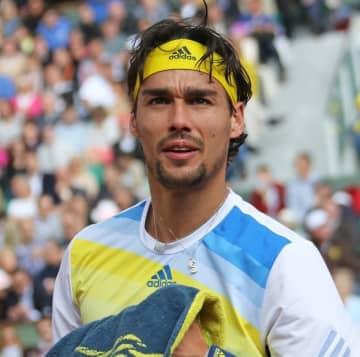 テニス、フォニーニが両足首手術 「プレーが待ち遠しい」 画像1