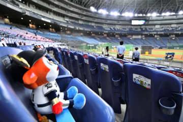 プロ野球、19日に開幕 国内スポーツの先陣切る 画像1