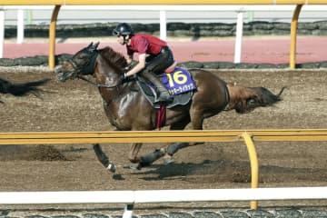 ラッキーライラックが好調 競馬の宝塚記念追い切り 画像1