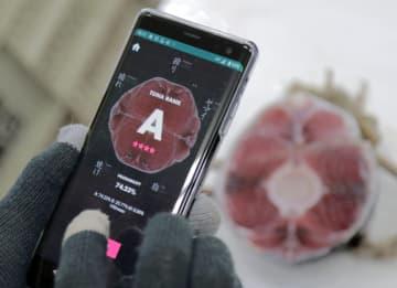 くら寿司、AIでマグロ買い付け 仕入れ安定、品質確保 画像1