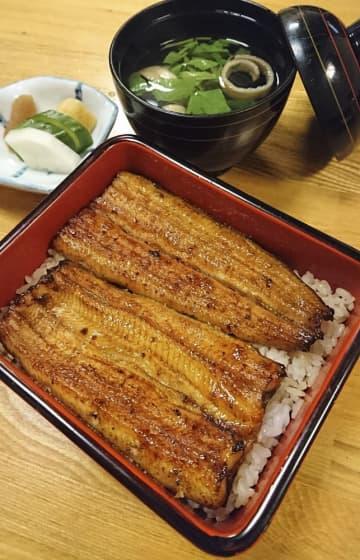 ウナギ稚魚が6年ぶり豊漁 昨年4倍超、かば焼き値下がりか 画像1