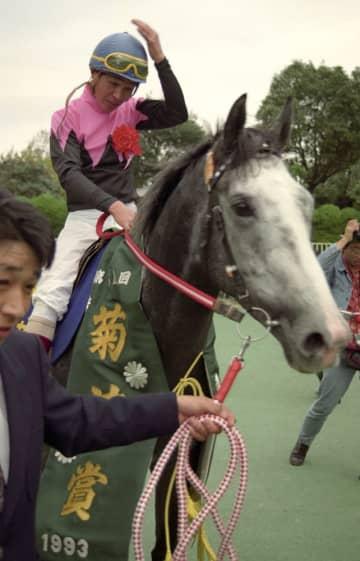 G1.3勝のビワハヤヒデが死ぬ 30歳牡馬、老衰のため 画像1