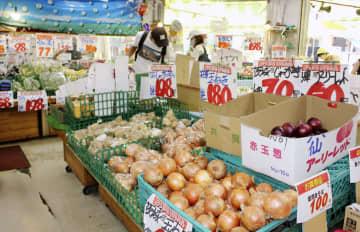長雨で野菜価格、全品目上昇 家計への影響続く見通し 画像1