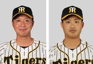 横山、再び阪神の支配下選手に ドラフト1位投手 画像1