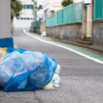 Garbage Management in Japan