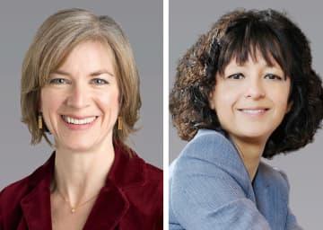 ゲノム編集にノーベル化学賞 欧米の2人、効率的に遺伝子改変 画像1