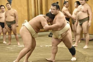 36歳の琴奨菊が現役続行へ 元大関、十両転落確実も 画像1