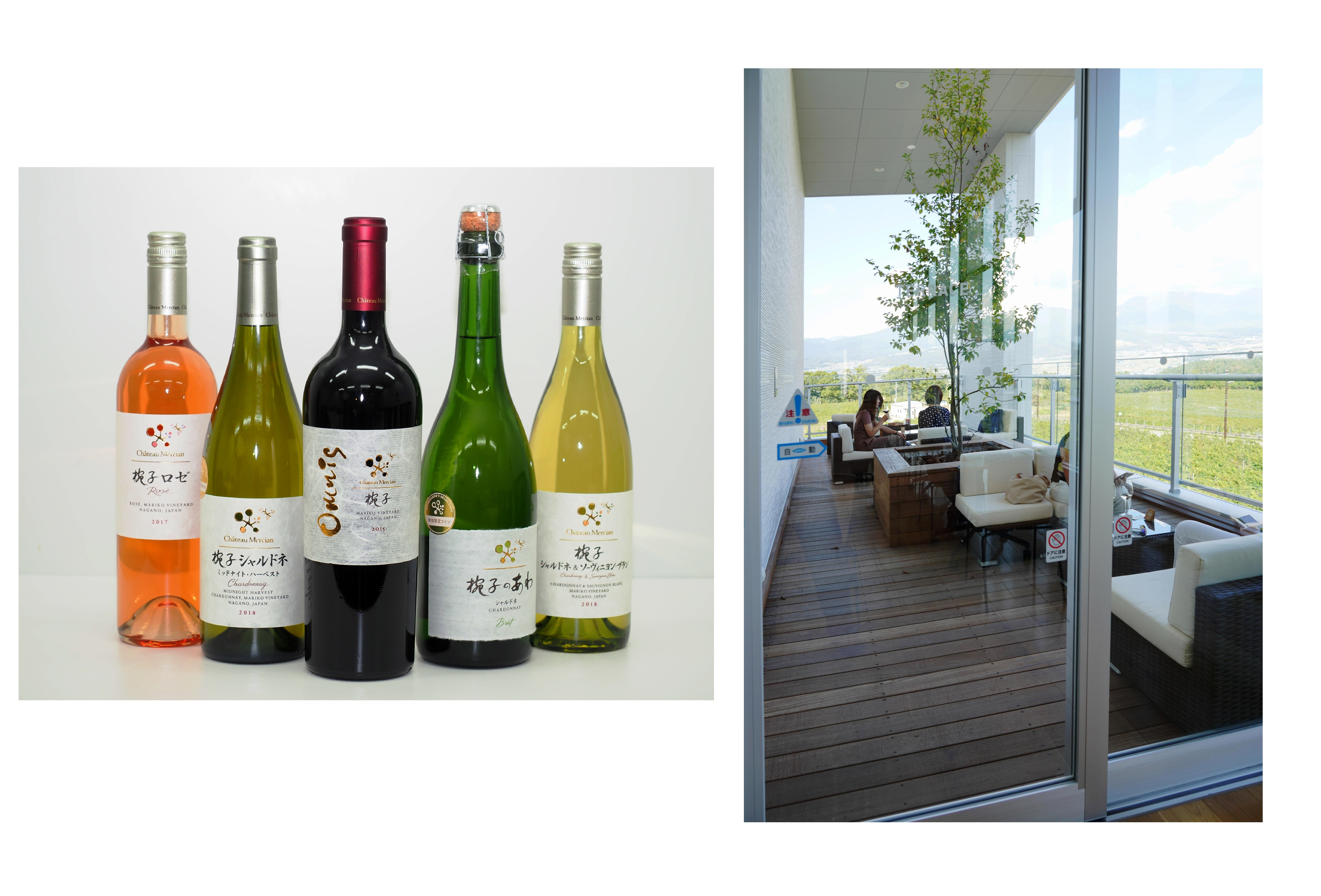 (左)椀子ワイナリーには、10種類程度のグラスワインが楽しめるテイスティングカウンターと、地域限定・ワイナリー限定などの希少なワインが購入できるワインショップも用意されている (右)「シャトー・メルシャン 椀子ワイナリー」には、広大なブドウ畑と自然の壮大な景観を楽しめるテラスが。趣向を凝らしたワイナリーツアーも用意され、観光にもお勧め
