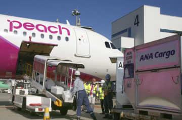 全日空、ピーチと貨物の共同運航 コロナでも事業は好調 画像1