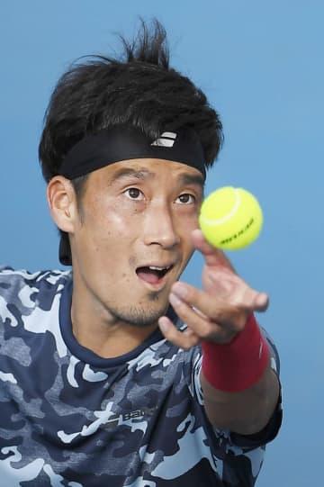 杉田、来季はセルビア拠点 男子テニスの32歳 画像1