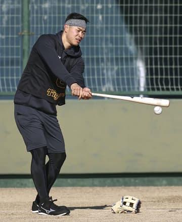 阪神の佐藤輝明「早く打ちたい」 矢野監督は全力勝負を期待 画像1