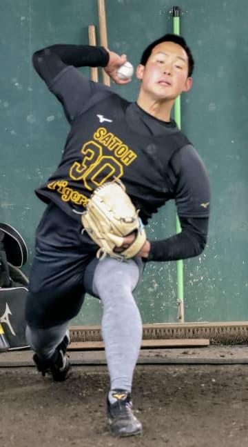 阪神の佐藤蓮、ブルペンで好感触 捕手を立たせて約20球 画像1