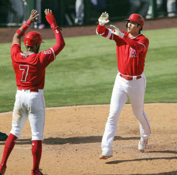 エンゼルスの大谷が本塁打 「2番・指名打者」 画像1