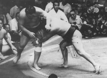 大相撲の元大関前の山が死去 先代高田川親方、61年初土俵 画像1