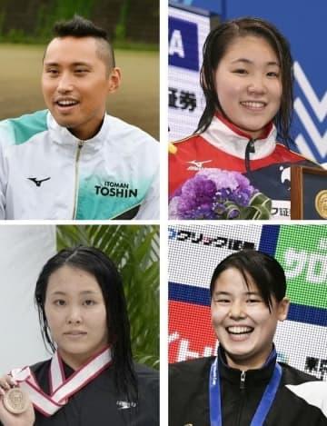 競泳のリレー要員に塩浦、白井ら 五輪代表は33人 画像1