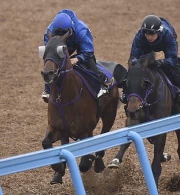 競馬、エフフォーリアが順調 皐月賞の最終追い切り 画像1