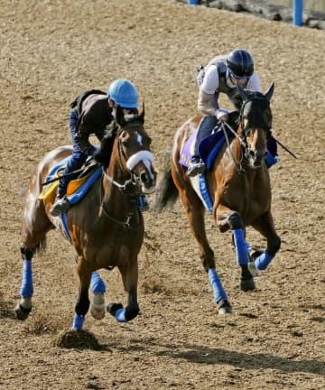 牝馬サトノレイナス仕上がり絶好 競馬、日本ダービー最終追い切り 画像1