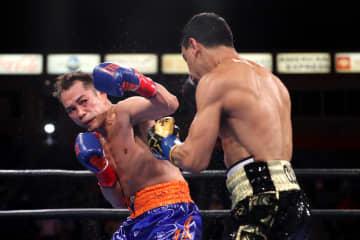 38歳のドネア、王座返り咲き ボクシング、ウバーリ破る 画像1