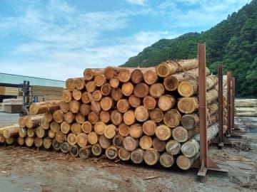 輸入木材高騰「ウッドショック」 国産も不足、住宅・家具に波及 画像1