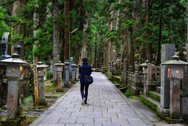 【和歌山県】世界遺産、日本のハワイ、パンダ好きの聖地・・・見どころ&グルメまとめ 画像4