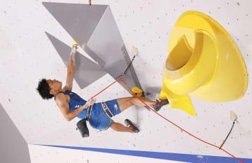楢崎智亜は4位 スポーツクライミング・5日 画像1