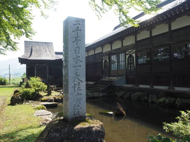 1本の木に会いに行く(29)薬照寺の大カツラ そして日本とミャンマー<新潟県> 画像6